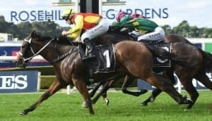 november 4 saturday rosehill horse racing tips