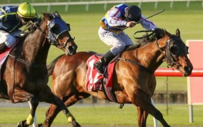 29/06/19 – Saturday Horse Racing Tips for Caulfield