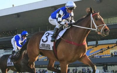Doncaster Mile 2021 – Horses, Betting Tips & Odds