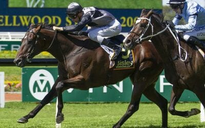26/12/19 – Boxing Day Horse Racing Tips for Randwick