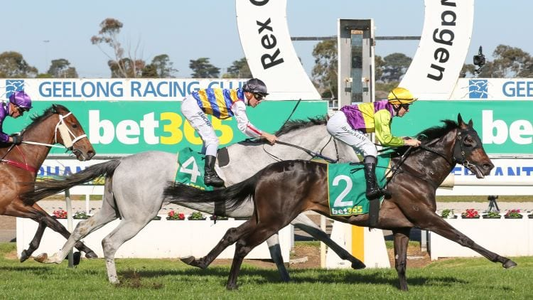 27/01/21 – Wednesday Horse Racing Tips for Geelong