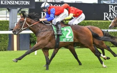 Champagne Stakes 2021 – Horses, Betting Tips & Odds