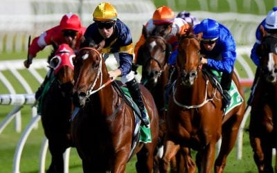 All Aged Stakes 2020 – Horses, Betting Tips & Odds