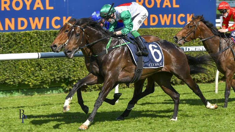 Spring Champion 2021 – Horses, Betting Tips & Odds